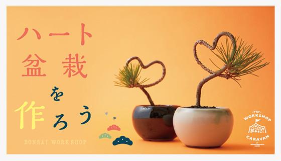 150128_bonsai_thumb