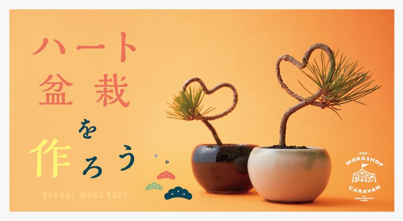 【2月10日開催】<br />ハート型の黒松盆栽を作るワークショップ at ららぽーとEXPOCITY店