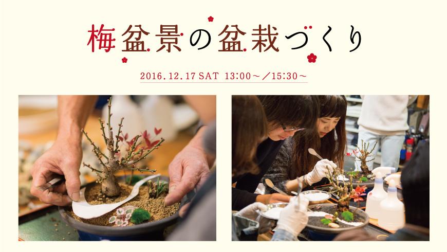 【12月17日開催】南船場店 梅盆景 盆栽ワークショップ開催のお知らせ