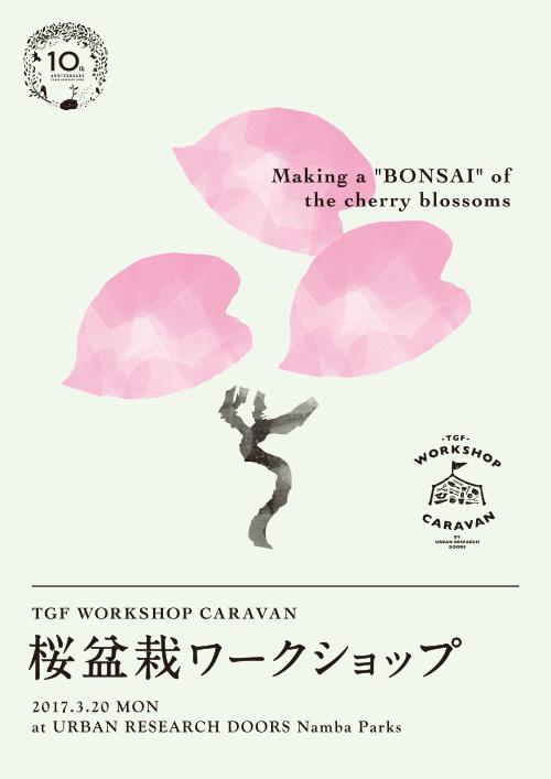 【3月20日開催】なんばパークス店10周年記念 桜盆栽ワークショップ