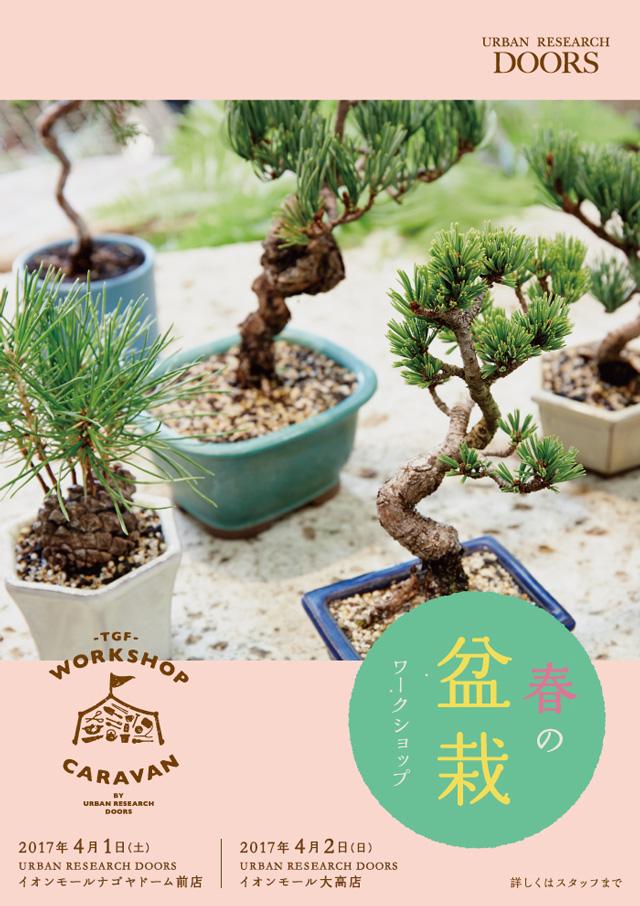 【4月1日・2日開催】名古屋エリア『春の盆栽ワークショップ』