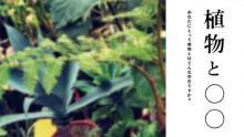 植物をテーマにした期間限定ショップ「植物と◯◯」