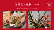 お正月飾り「梅盆景の盆栽」を作るワークショップ